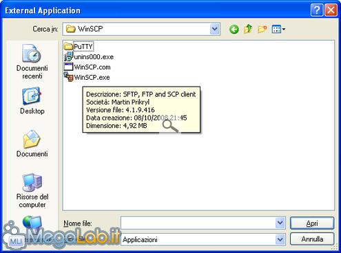 Applicazioni esterne con FF 6.PNG