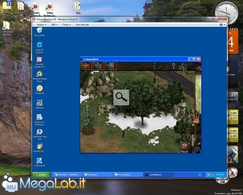 MLIShot14.jpg