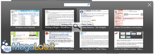 Firefox 3.6 Alpha 1 1.png