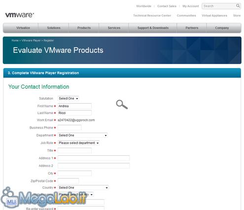 VMwarePlayerAero2.png