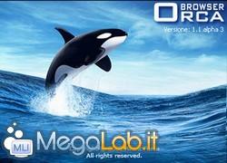 Orca1.jpg