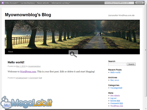 Blog WordPress 10.png