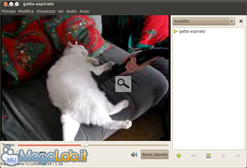 Gatto-aspirato-video.png