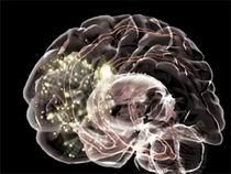 02_-_Electronic_Brain.jpg