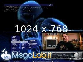 Linus_torvalds_thumb_zoom.jpg