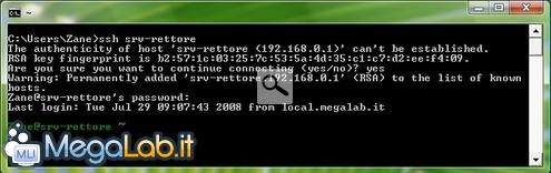 Cywin_ssh_client_logged.jpg