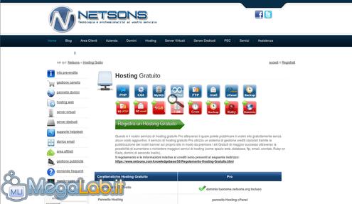 Netsons.png