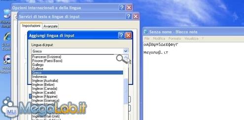 MLIShot_20110613133348.jpg