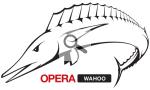 Logo-wahoo-v01r01.png