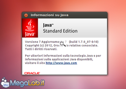 Java_7u7_ubuntu.png