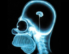 20100421232034_13194230_20100421231931_199930431_home-simpson-brain.jpg