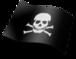 20100807103537_564340866_20100807103457_2041433883_pirateria.png